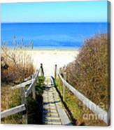 Way To The Bay Canvas Print