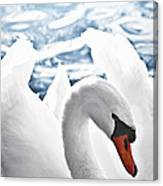 White Swan On Water Canvas Print