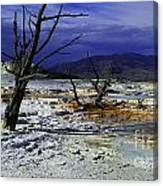 Yellowstone National Park 6 Canvas Print