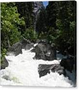 Yosemite National Park 2011 Canvas Print
