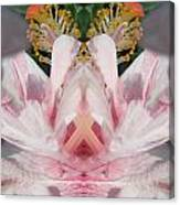 Hibiscus Mystery Canvas Print