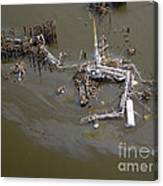 Hurricane Katrina Damage Canvas Print