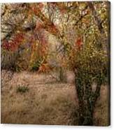 1053 Canvas Print