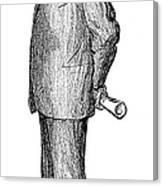 Woodrow Wilson (1856-1924) Canvas Print