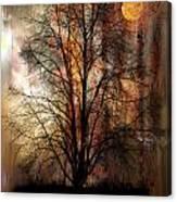1107 Canvas Print