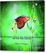 14- The Butterfly Canvas Print