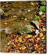Fall Along Williams River Canvas Print