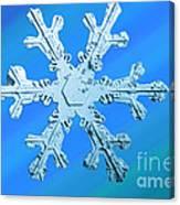 Snow Crystal Canvas Print