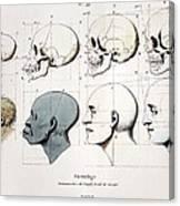 1760a Petrus Camper Facial Angle Eugenics Canvas Print
