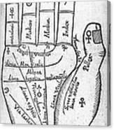 17th Century Palmistry Diagram Canvas Print