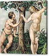1863 Adam And Eve From Zoology Textbook Canvas Print