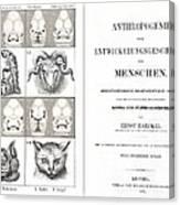 1874 Frontis Haeckel Anthropogenie Canvas Print