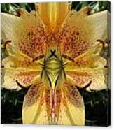 Lily Fantasy Canvas Print