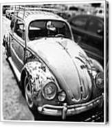 1961 Volkswagon Beetle Canvas Print