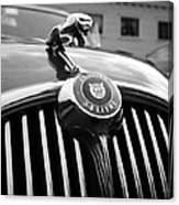 1963 Jaguar Front Grill In Balck And White Canvas Print