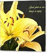 1st Timothy Flower Canvas Print