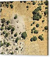 A Village On The Shores Of Lake Chad Canvas Print