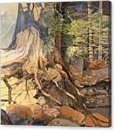 Ancient Witness II Canvas Print