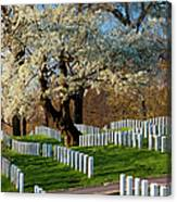 Arlington National Cemetary Canvas Print