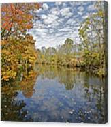 Autumn Colors On The Delaware And Raritan Canal Canvas Print