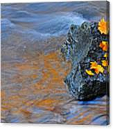 Autumn Flow Canvas Print