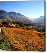 Autumn In South Tyrol Canvas Print