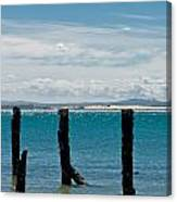 Beautiful Rotten Mooring On A Beach Canvas Print