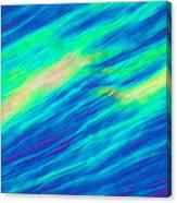 Cholesteric Liquid Crystals Canvas Print