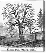 Hartford: Charter Oak Canvas Print