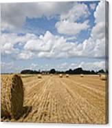 Harvest Time In France Canvas Print
