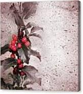 Holly Branch  Canvas Print