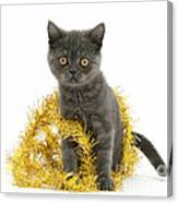 Kitten With Tinsel Canvas Print