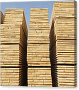 Logged Timber From The Tropical Canvas Print