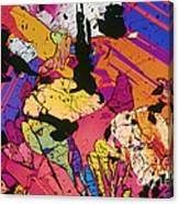 Moon Rock, Transmitted Light Micrograph Canvas Print