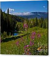 Ohio Creek Valley Colorado Canvas Print