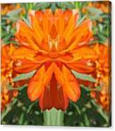 Orange Fantasy Canvas Print
