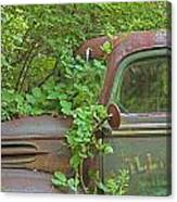Overgrown Rusty Ford Pickup Truck Canvas Print