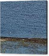 Puurijarvi Canvas Print