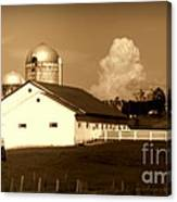 Cattle Farm Mornings Canvas Print