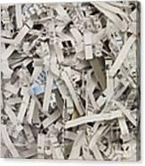Shredded Paper Canvas Print