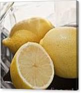 Still Life Of Bottles  And Lemons Canvas Print