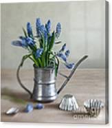 Still Life With Grape Hyacinths Canvas Print