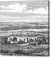 Suez Canal, 1869 Canvas Print