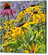 Summer Color Canvas Print