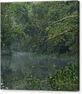View Of The Menangul River And Rain Canvas Print