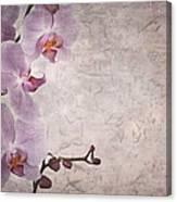 Vintage Orchids Canvas Print