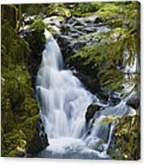 Waterfalls Of Sol Duc River, Olympic Canvas Print