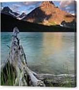 Waterfowl Lake Canvas Print