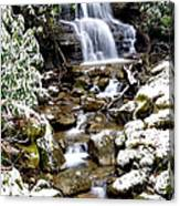 Winter Waterfall Back Fork Of Elk River Canvas Print