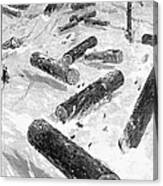 Wisconsin: Lumbering, 1885 Canvas Print
